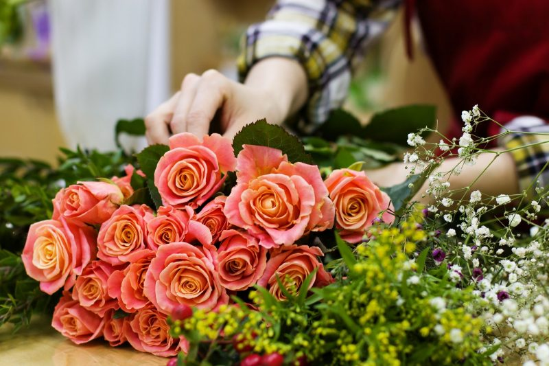fleuristes reims pixabay