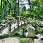 parc reims pixabay