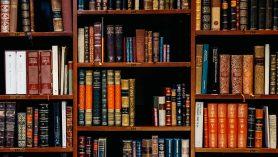 bibliotheques reims unsplash
